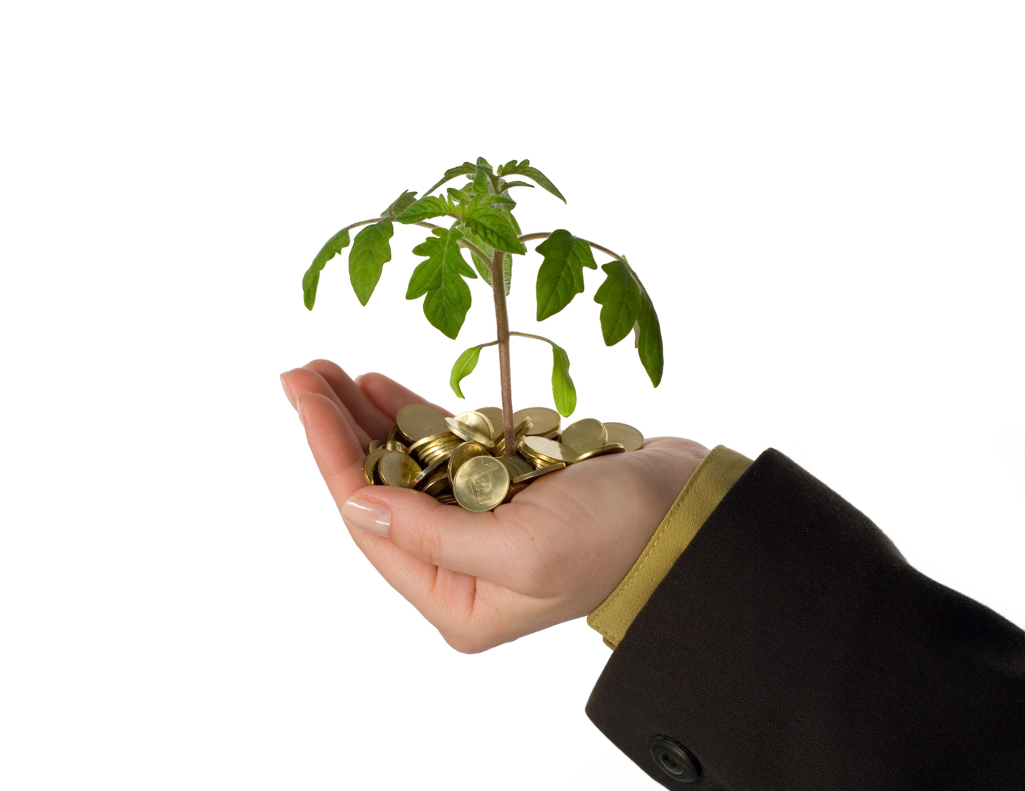 Utrzymuje się zainteresowanie inwestowaniem w nowy tabor
