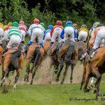 DSV transportuje nawierzchnię na wyścigi konne